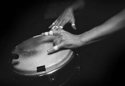 musiker-12.jpg